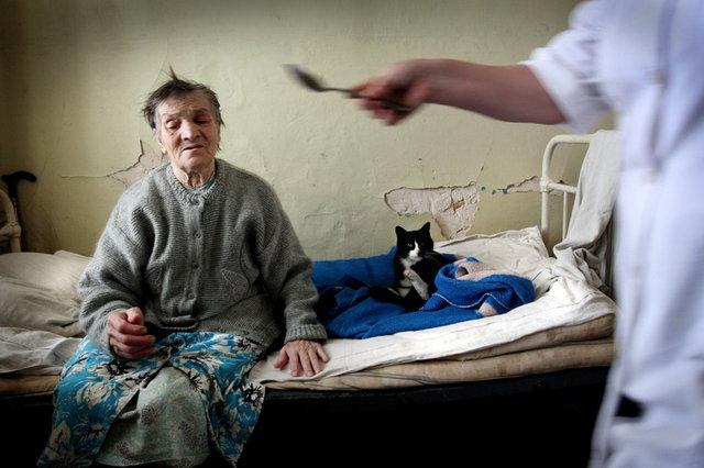 Есть ли дома престарелых в россии коротоякский дом престарелых